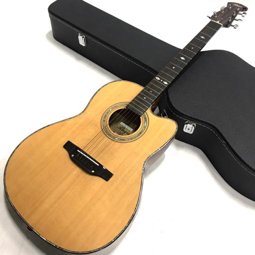 アレグレ エレアコギター